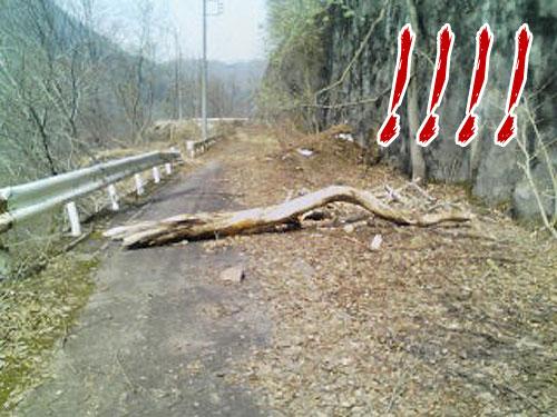 2008_04_23_12.jpg
