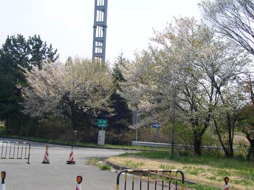 2008_04_23_06.jpg