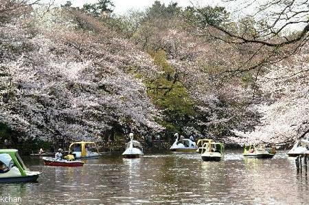 2008_04_05_02.jpg