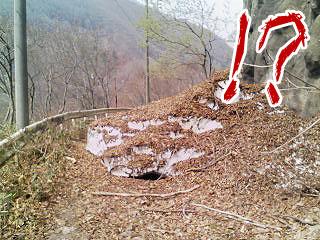 2008_04_23_11.jpg
