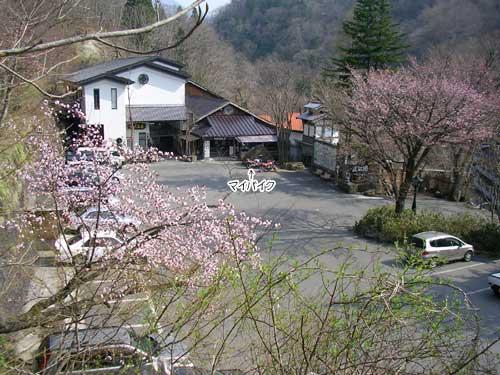 2008_04_23_16.jpg